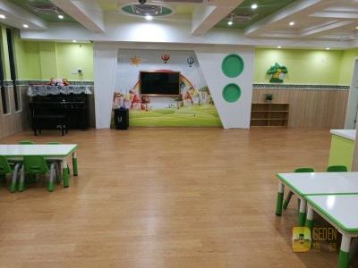 各地幼儿园 纯色 木纹 多层 同透 (2)